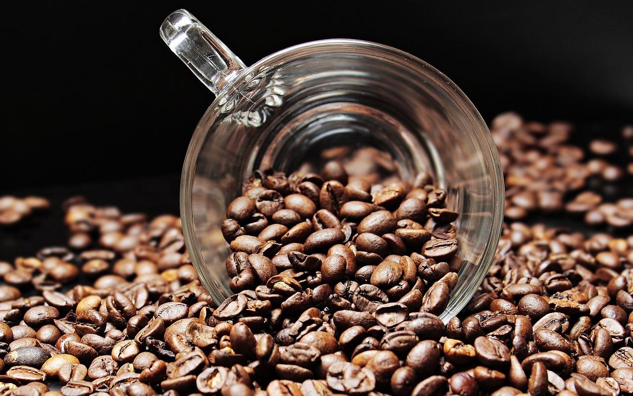 コーヒー 焙煎士